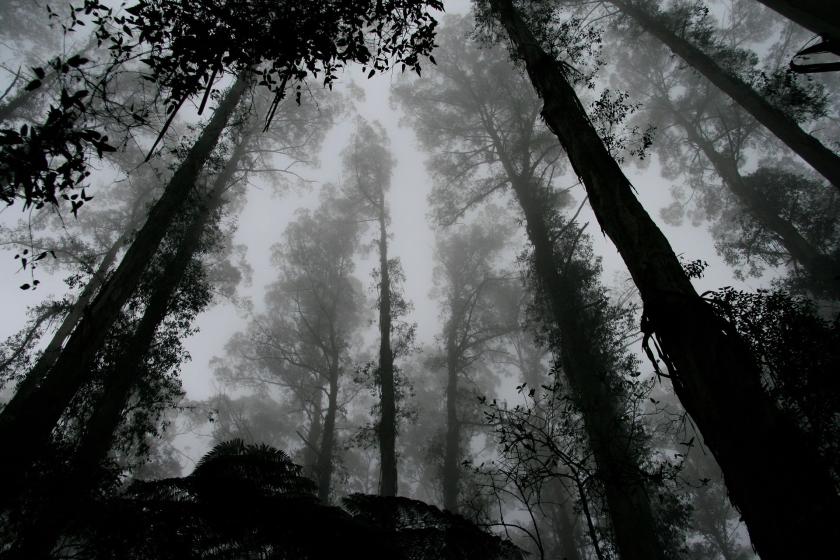 0405_3.jpg